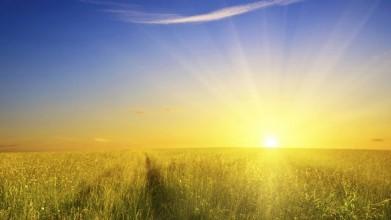 Vitamine D staat ook wel bekend als de zonneschijn vitamine